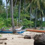 Отдых в Индонезии о.Бали